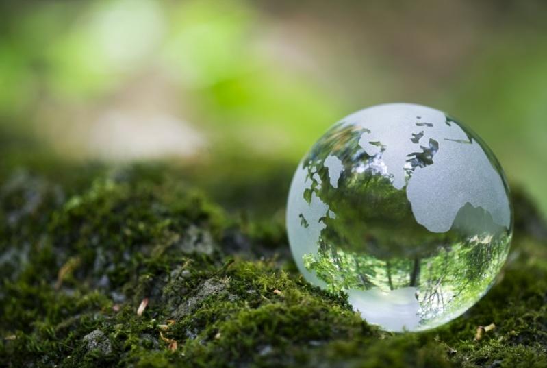 Licenciamento Ambiental para Supressão Vegetal
