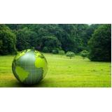 consultoria do meio ambiente na Vila Romana