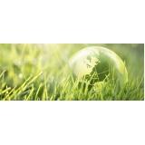 consultorias do meio ambiente em Itaquera