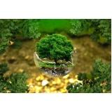 licenciamento ambiental em app