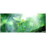 licenciamento ambiental em área de preservação permanente