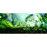 onde encontrar licenciamento ambiental supressão vegetação no Brooklin