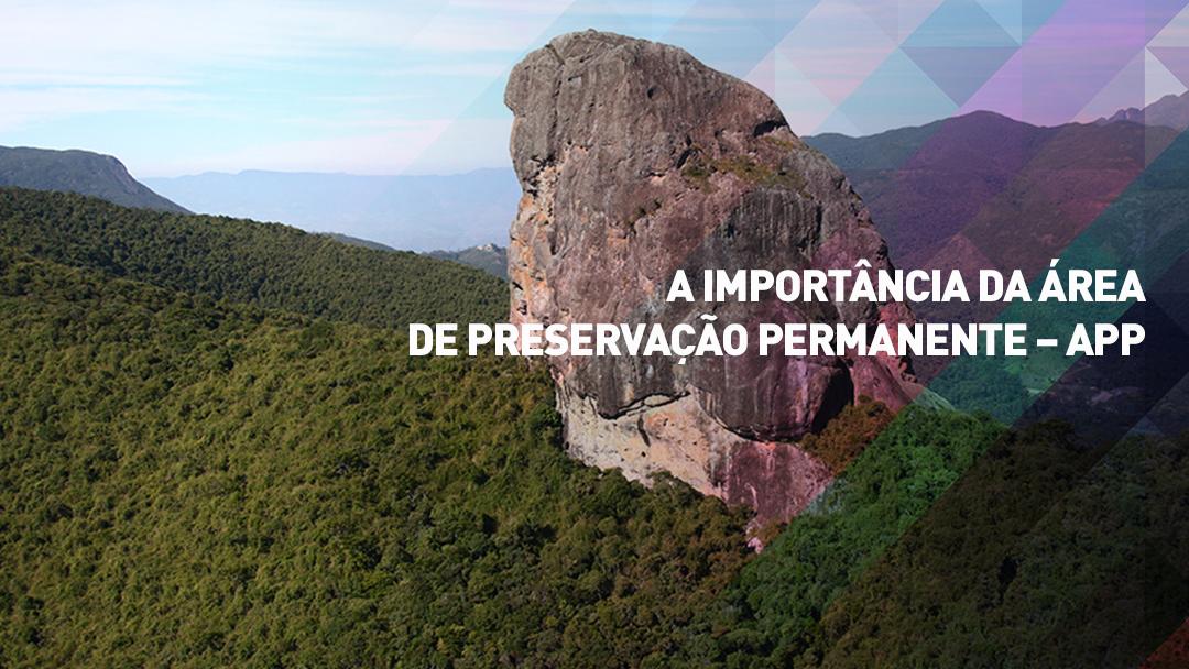 APP Área de Preservação Permanente